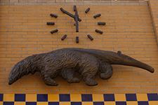 Anteater Clock